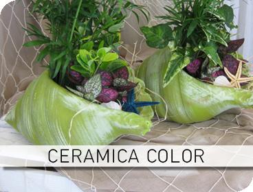 Φυτοσυνθέσεις Ceramica Color