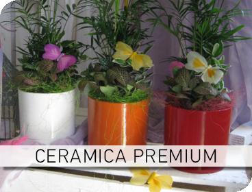 Φυτοσυνθέσεις Ceramic Premium